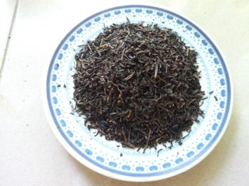 中火烏龍茶W1